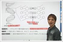 生物西村先生1